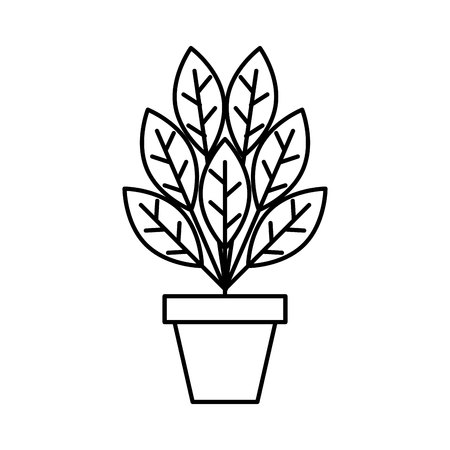 plant in pot isolated icon vector illustration design