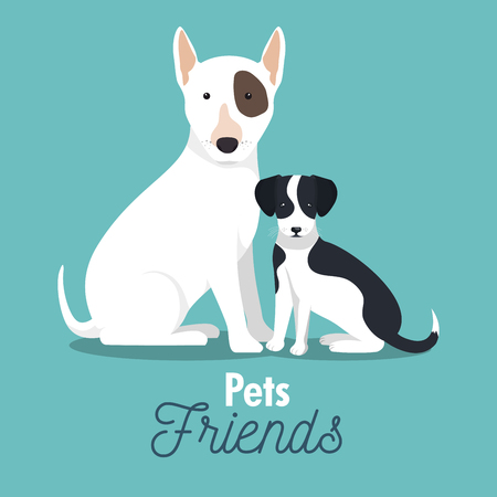 pet friends doggys animal graphic vector illustration eps 10 Illustration