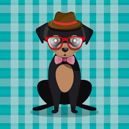 fashion dog puppy sit hat glasses bow checkered bacground vector illustration eps 10 Illustration