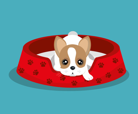 boston terrier: boston terrier lying in red bed vector illustration eps 10