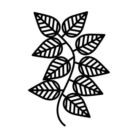 leafs: tea leafs isolated icon vector illustration design