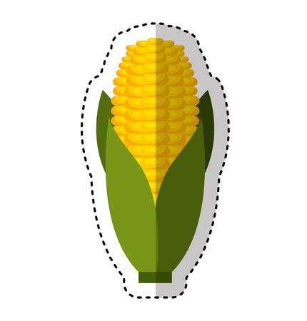 sweetcorn: cob corn isolated icon vector illustration design