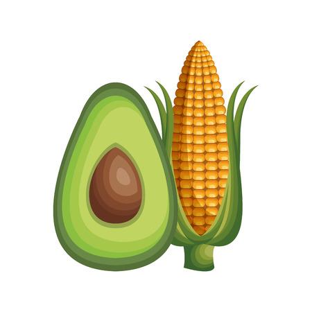 healthy and fresh vegetables vector illustration design