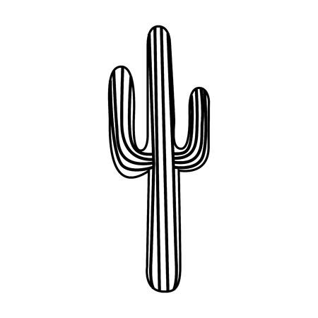 cactus desert plant icon vector illustration design Illustration