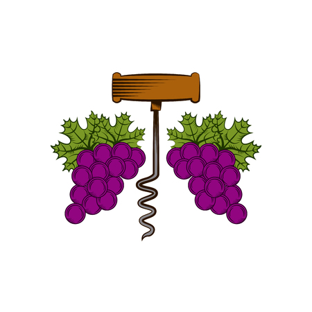 corkscrew and bunch of grapes over white background. colorful design. vector illustration Illustration