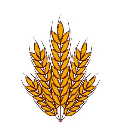 白い背景上の小麦耳アイコン。カラフルなデザイン。ベクトル図