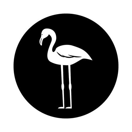 flamenco exotic bird icon vector illustration design Ilustração