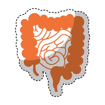 Human organ intestine icon vector illustration design