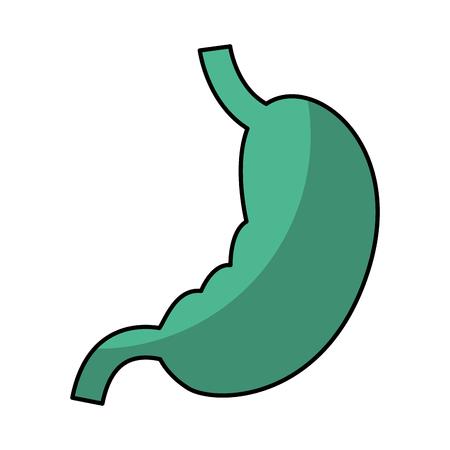Stomach human organ icon vector illustration design