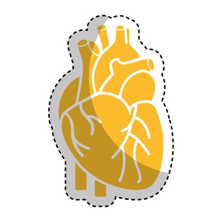 heart organ human icon vector illustration design Illustration