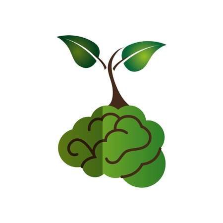tree of knowledge: brain human with tree creative icon vector illustration design