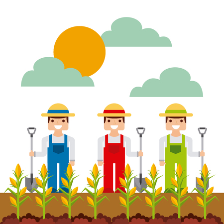 farmers with corn seed over white background. colorful design. vector illustration Illustration