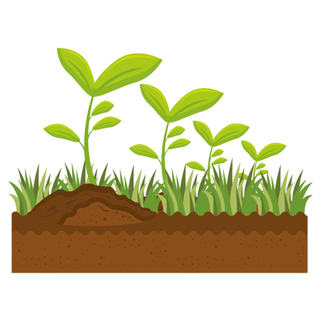 cute garden plants cultive vector illustration design Çizim