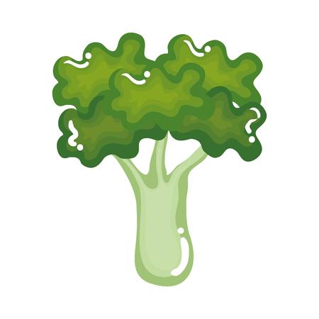 vers ontwerp van de het pictogram vectorillustratie van broccoli het plantaardige Stock Illustratie