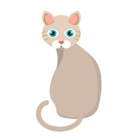 cute cat pet icon vector illustration design