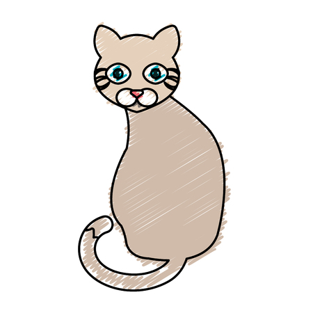 cat cute pet icon vector illustration design Illustration