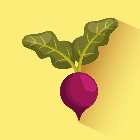 beetroot vegetable food over yellow background. vector illustration Ilustracja