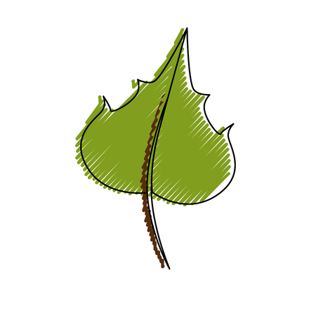 Grape leaf isolated icon vector illustration graphic design