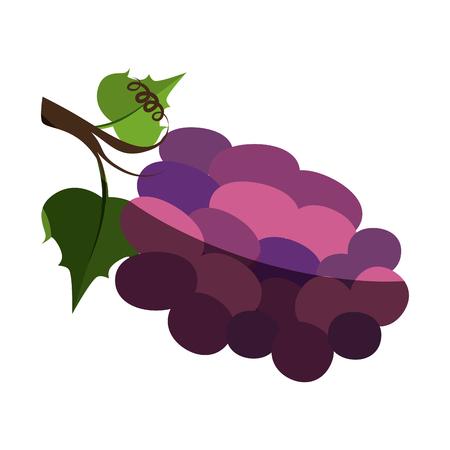 Diseño gráfico del ejemplo del vector del icono de la fruta de las uvas deliciosas Foto de archivo - 76566559