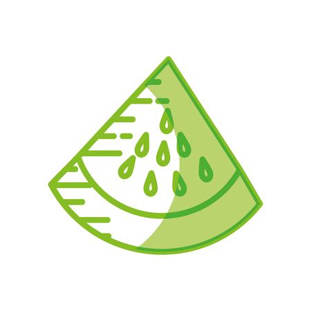 Delicious watermelon fruit icon vector illustration graphic design