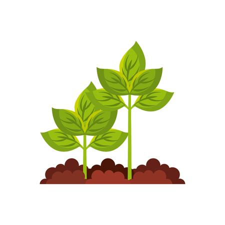 Plant agriculture isolated icon vector illustration design Illustration