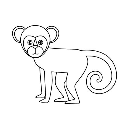 Titi monkey isolated icon vector illustration design