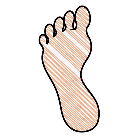 Ludzka stopa sylwetka ikona wektor ilustracja projekt graficzny