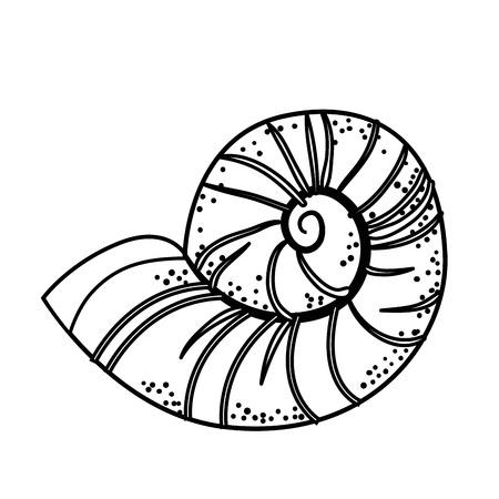 Conch marine animal icon vector illustration graphic design Illustration