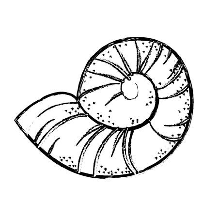 조가비 해양 동물 아이콘 벡터 일러스트 그래픽 디자인