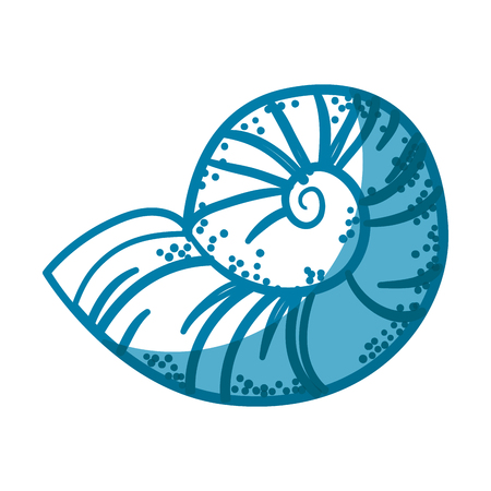 Conch marine animal icon vector illustration graphic design Illustration