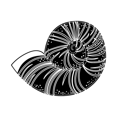 Conch marine animal icon vector illustration graphic design Ilustrace