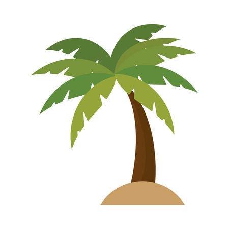 tropical palm icon over white background. vector illustration