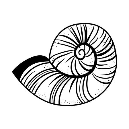 Sea snail icon over white background. vector illustration Illustration