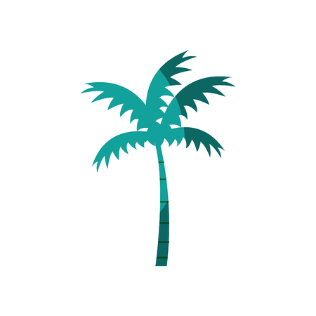 Tropical palm icon over white background.