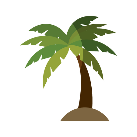 tropical palm icon over white background. vector illustration Stock Vector - 76964792