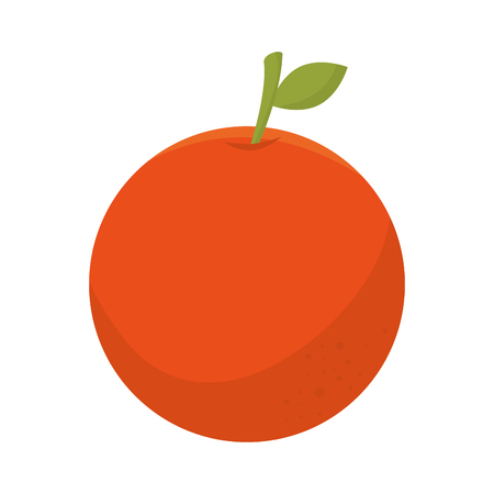 orange fruit fresh icon vector illustration design