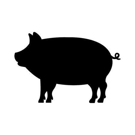 Pig animal farm isolated icon vector illustration design.