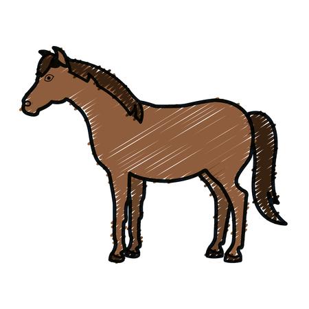 paard dierlijk boerderij pictogram vector illustratie ontwerp