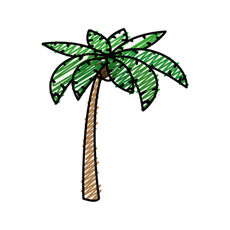 tropical palm icon over white background. colorful design. vector illustration Illustration