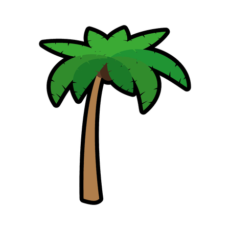 tropical palm icon over white background. colorful design. vector illustration Stock Vector - 77196547
