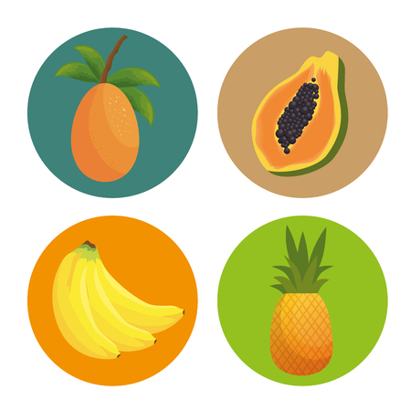 pattern tropical fruits icon vector illustration design