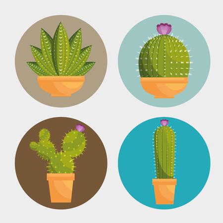 Cactus plante botanique icône illustration vectorielle conception Banque d'images - 77250110