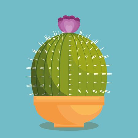 Cactus plant botany icon vector illustration design Illustration