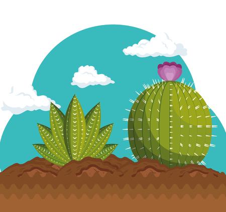 Cactus plant botany icon vector illustration design Stok Fotoğraf - 77250803