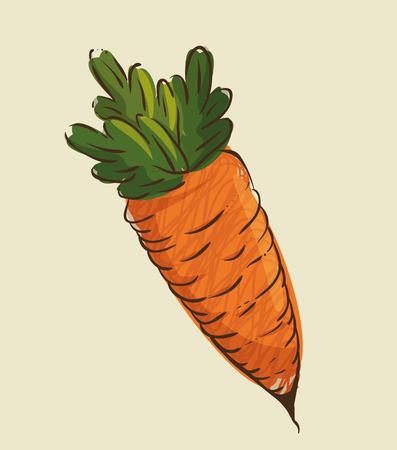 ontwerp van de wortel het verse en gezonde plantaardige vectorillustratie
