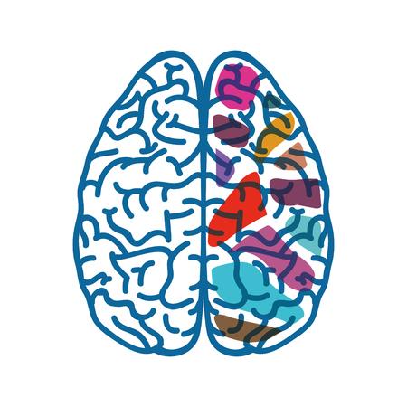 Human brain symbol icon vector illustration graphic design Stock Vector - 77342936