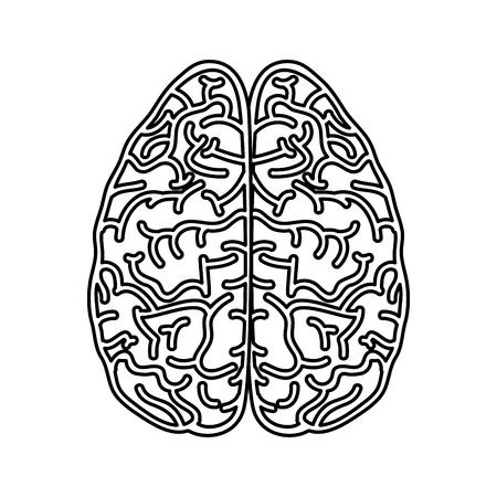 Human brain symbol vector illustration design icon