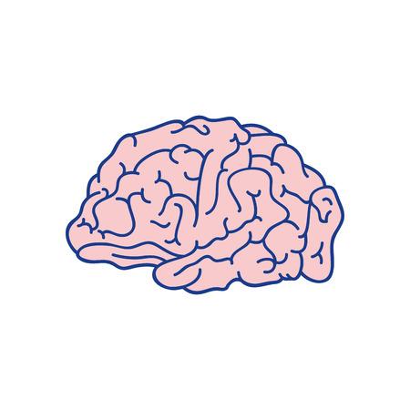Human brain symbol icon vector illustration graphic design icon vector illustration graphic design
