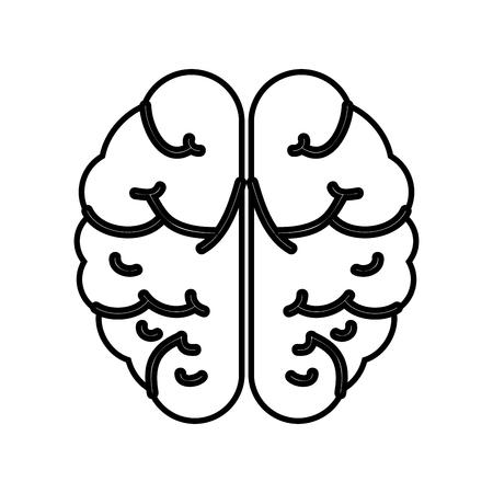 Human brain symbol icon vector illustration graphic design Stock Vector - 77495682