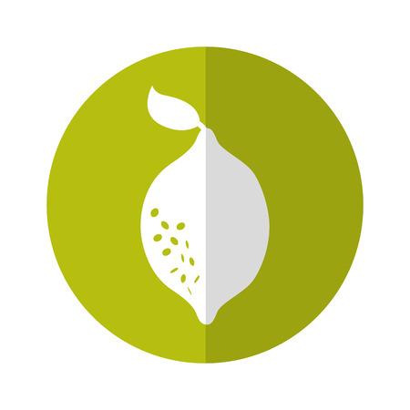 lemon fresh fruit icon vector illustration design Illustration